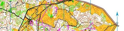 Alpe Adria Orienteering Cup - KIDS, M10, W10 - middle distance (17/06/2017)