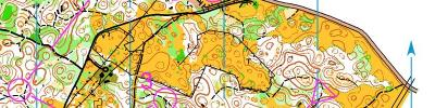 Alpe Adria Orienteering Cup - M14, W14 - middle distance (17/06/2017)