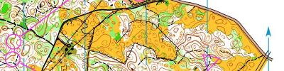 Alpe Adria Orienteering Cup - W55, M70, W65 - middle distance (17/06/2017)