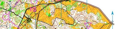 Alpe Adria Orienteering Cup - W21B, M65 - middle distance (17/06/2017)
