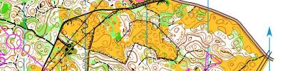 Alpe Adria Orienteering Cup - M21B, M55, M60 - middle distance (17/06/2017)