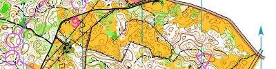 Alpe Adria Orienteering Cup - W16, W45, OPEN - middle distance (17/06/2017)