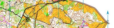 Alpe Adria Orienteering Cup - W18, W35, W21A - middle distance (17/06/2017)