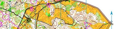Alpe Adria Orienteering Cup - M16, M45, M50 - middle distance (17/06/2017)