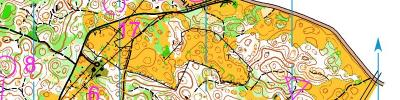 Alpe Adria Orienteering Cup - M21E - middle distance (17/06/2017)